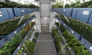 Artist's impression of a hydroponic cultivation area