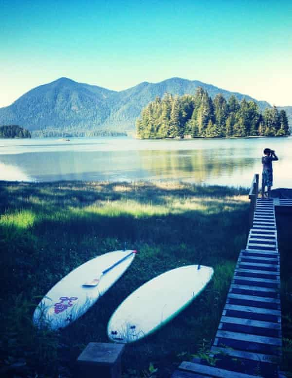 Spotting some bald eagles on BC's coast, Tofino, a wonder secluded end of the road town