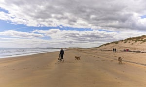 A person walking dogs on the beach a Druridge Bay on a sunny day