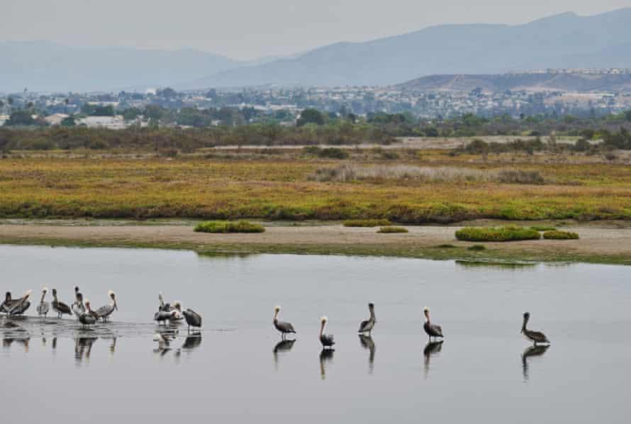 Vista do Estuário do Rio Tijuana.