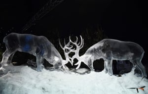 The impressive sculpture of the stags illustrates the intricacy and skill involved in creating the works out of ice.
