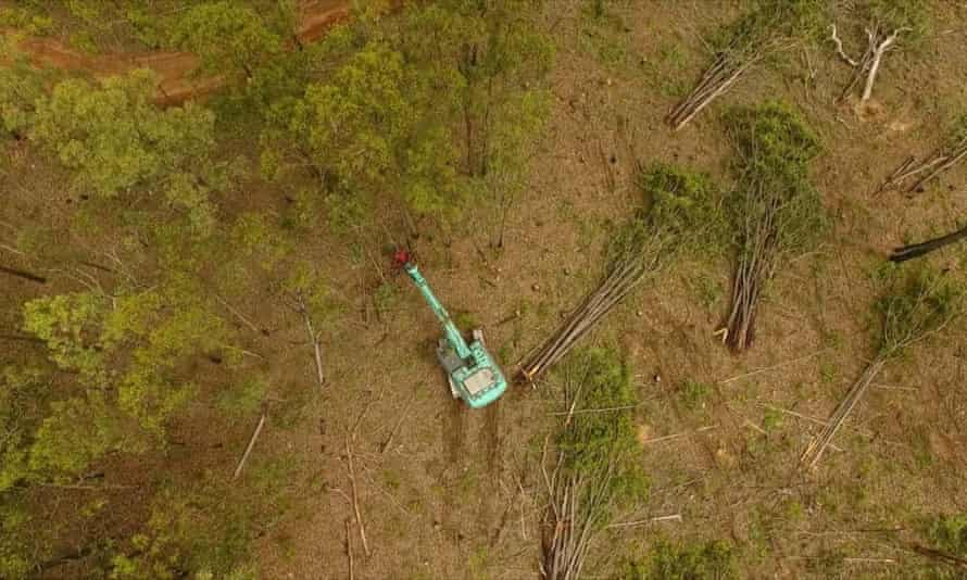 Aerial image of a bulldozer clearing trees for an urban expansion near Ipswich, southeast Queensland, April 2017.