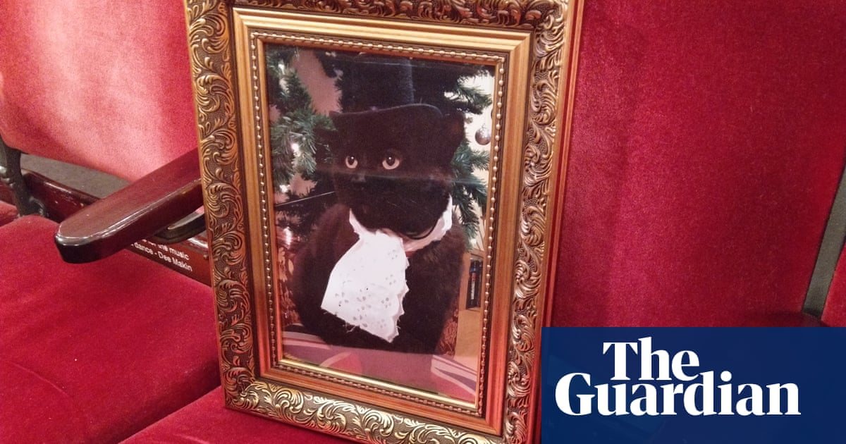 'We sponsored an opera seat for our cat': readers on commemorating their beloved pets