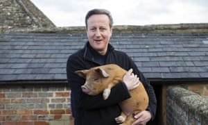 David Cameron on a visit to a farm in his constituency in 2014.
