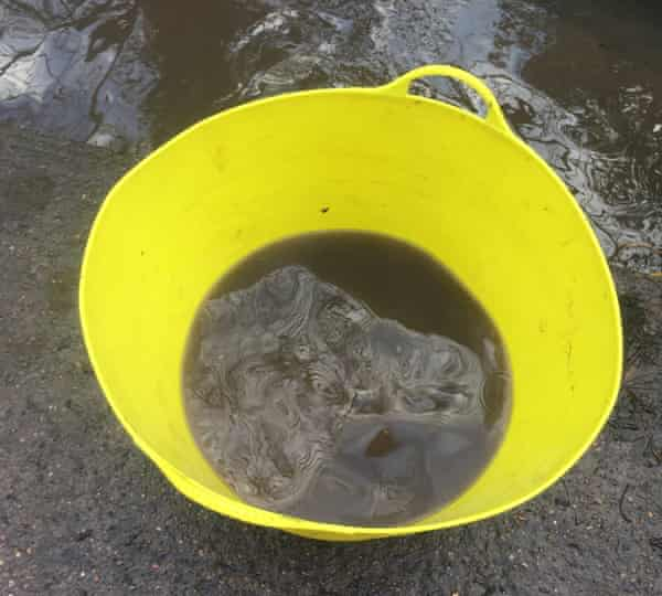 Sample taken from the Vale Brook Culvert. January 16 2021