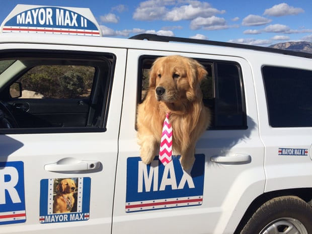 Mayor Max spends his days promoting local businesses and charities and attending town events in Idyllwild, California.