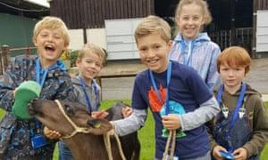 Children petting a calf at Stockley Farm Park, Northwich.