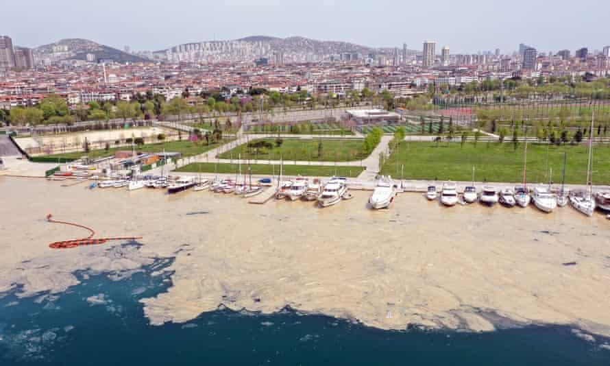 Sea snot near the Maltepe, Kadiköy and Adalar districts of Istanbul.