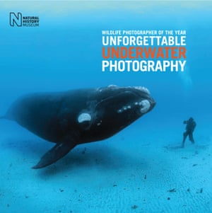 Wildlife photographer of the year – Unforgettable Underwater Photography is published by the Natural History Museum.