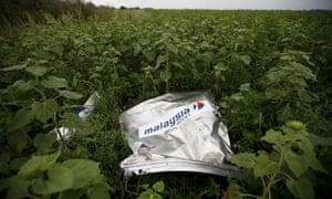 Debris from MH17 near the village of Rozsypne in Ukraine.