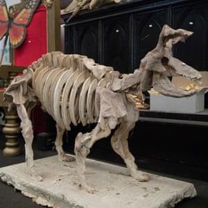 A skeleton prop