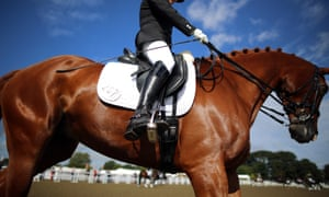 The use of crank nosebands is common in dressage events. The Fédération Equestre Internationale say that there are clear rules on the fitting of nosebands on horses at international events.