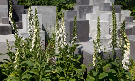 Concrete cubes in Robert Barker's Skin Deep garden.