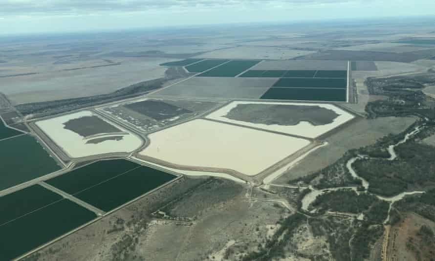 Photographs taken by Centre Alliance senator Rex Patrick of cotton farms on the Moonie River in southern Queensland.