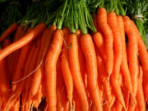 Fresh bunch of washed carrots at Farmers market, Tasmania, Australia.