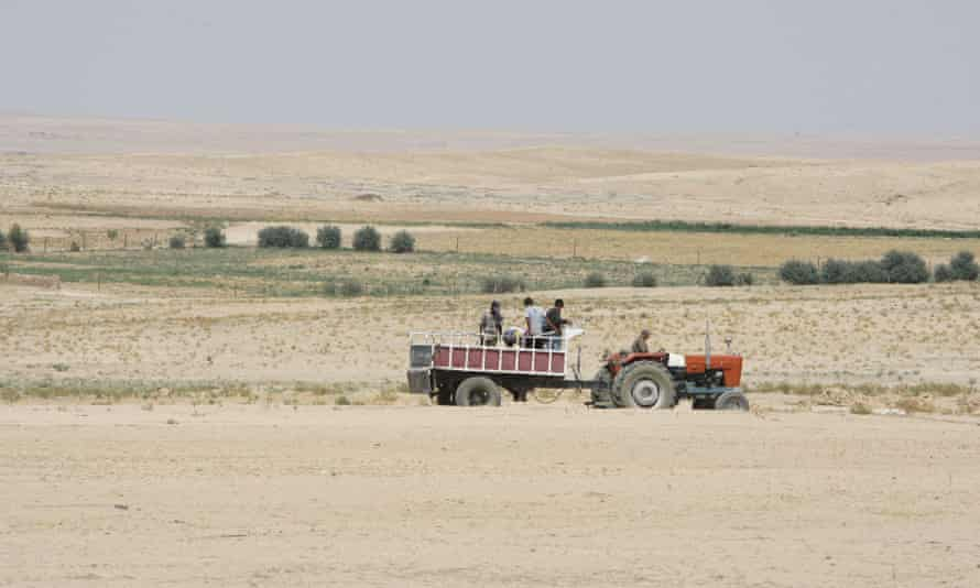 Farmers ride in a tractor in the drought-hit region of Hasaka in north-eastern Syria. As they lose livestock and crops wither, many farmers move to nearby cities.