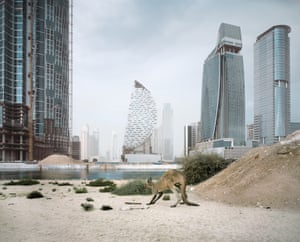 Allenby-Pratt says the project was inspired by building sites in Dubai that were abandoned during the 2009-2010 financial crisis