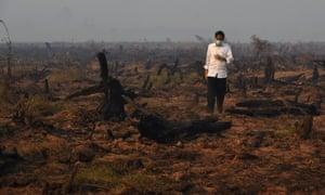 Indonesia's President Joko Widodo inspects peatland in Kalimantan