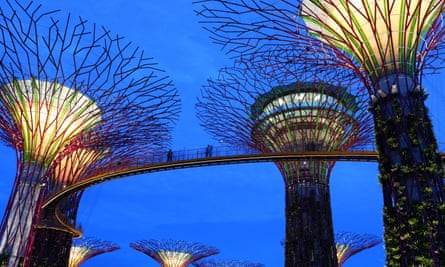 Supertree Grove at dusk in Gardens by the Bay, Singapore