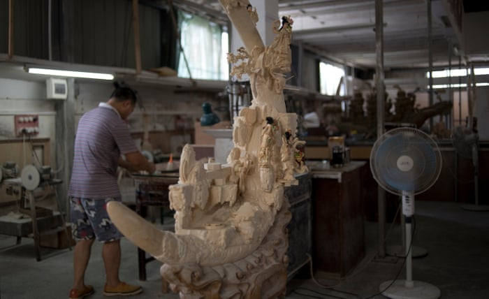Elephants are not the only victims': the lament of China's ivory