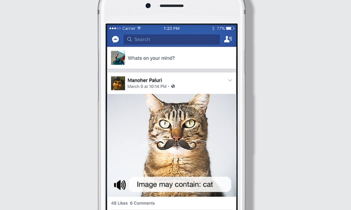 77694545ba8bbe  Image may contain... cat   – now Facebook can talk you through your photos