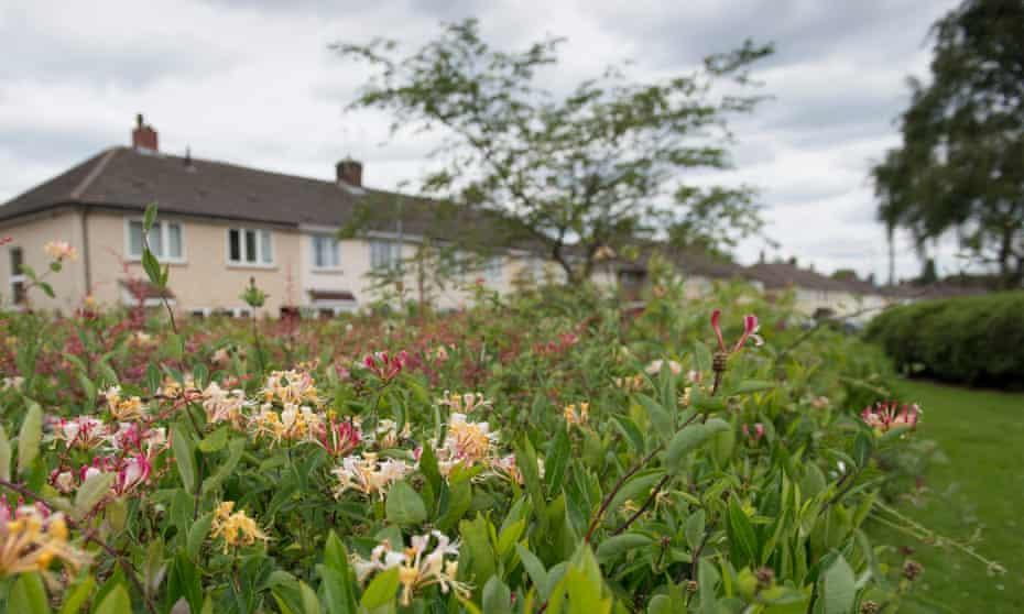 The Stowlan estate