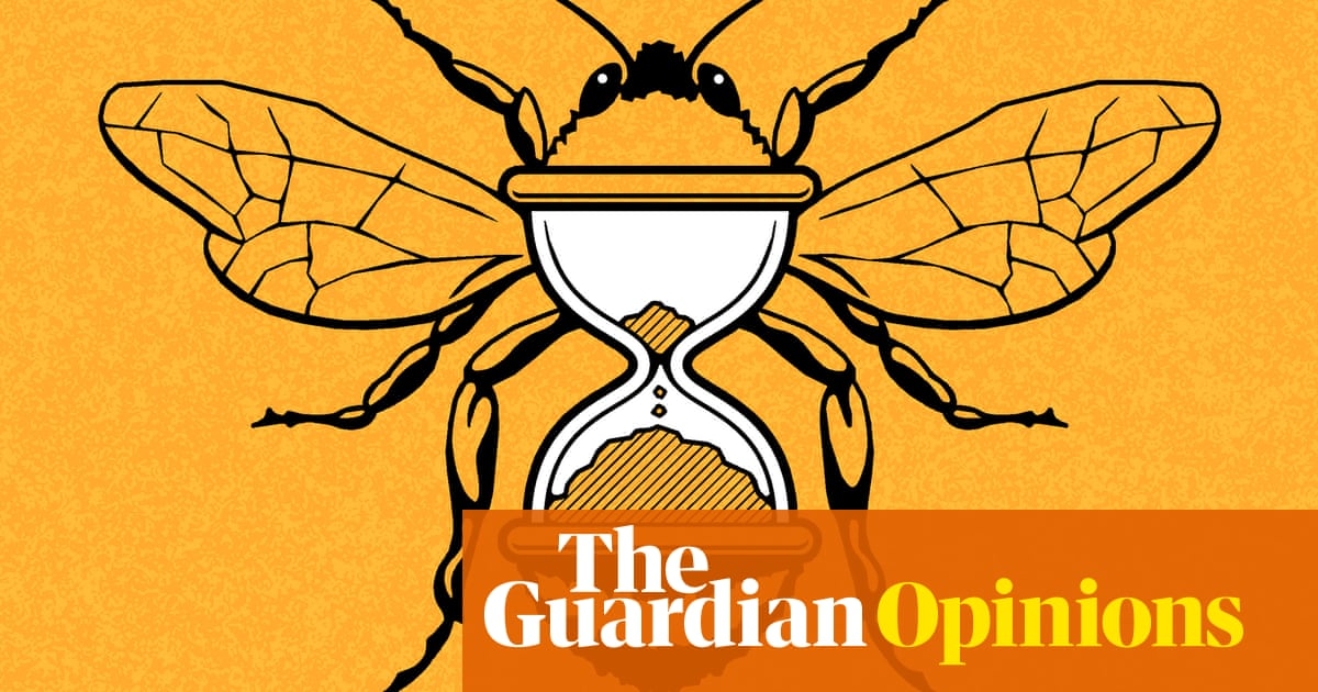 The selfish case for saving bees: it's how to save ourselves