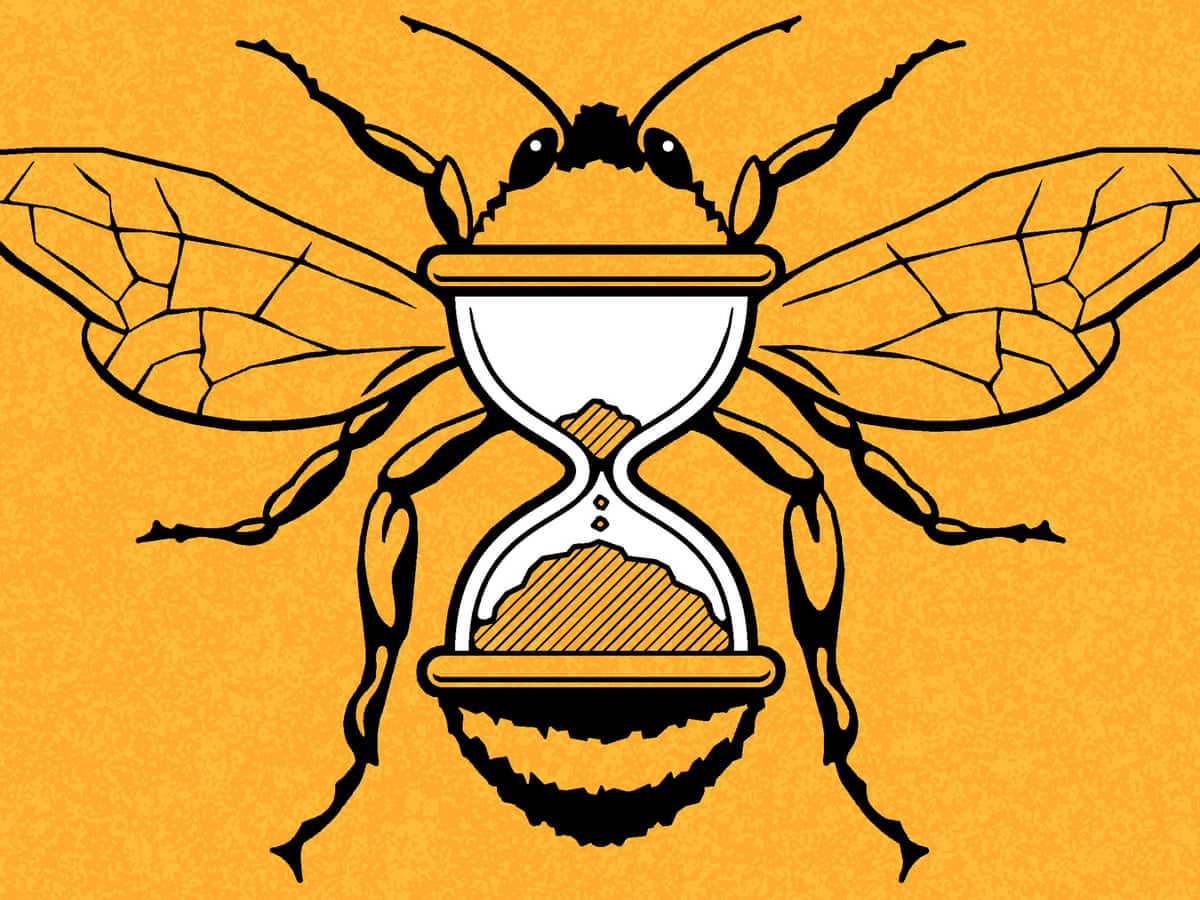 The selfish case for saving bees: it's how to save ourselves | Bees | The  Guardian