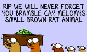 A moment of silence for the Bramble Cay melomys, the small rodent now listed as extinct due to climate change