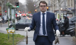 The mayor of 17th arrondissement of Paris, Geoffroy Boulard, Les Republicains, has launched a website where people can report the rats they have spotted.