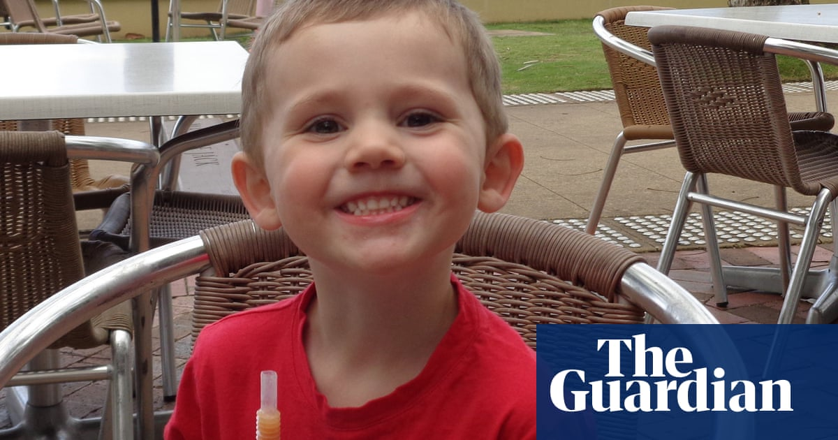William Tyrrell: police conduct fresh search into boy's NSW disappearance – The Guardian