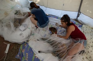 Volunteers care for burned sheep at a field hospital for animals after a wildfire in the Manavgat district of Turkey.