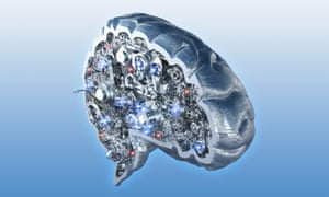 Mind and machine … a cross section of an artificial brain. Photograph: Alamy