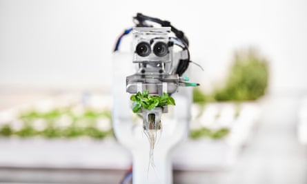 A robotic picker holding some leaves with its two lenses looking much like eyes.