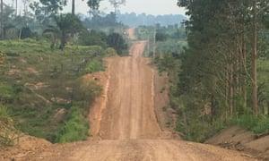 dusty road through the Amazon