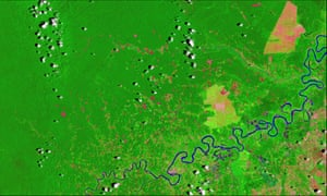 Deforestation in the the Peruvian Amazon shown in pink on a satellite image