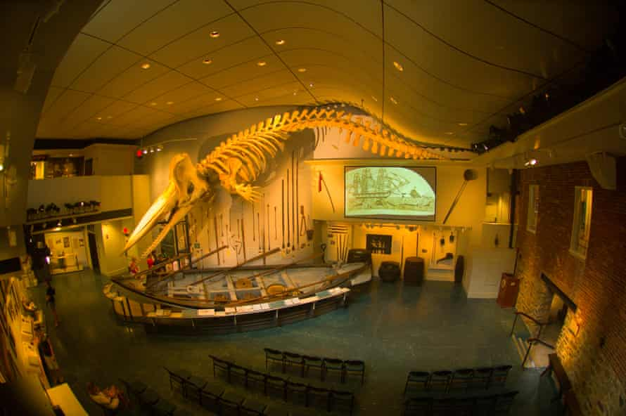 The whale skeleton in Nantucket's Whaling Museum.
