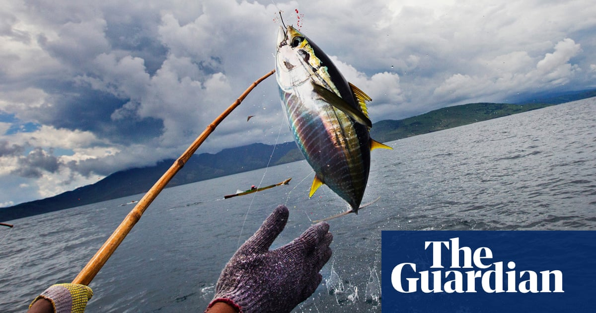One fish at a time': Indonesia lands remarkable victory