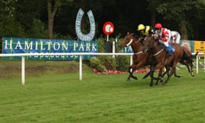 Racing at Hamilton will be the centre of attention on Thursday.