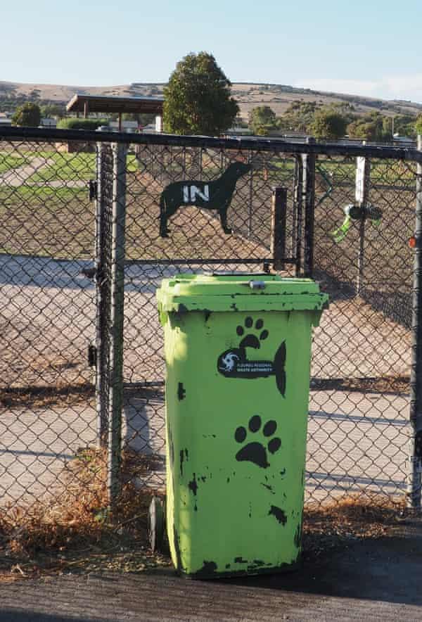 The dedicated dog poo bin in Port Elliot