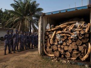 A container filled with tons of illegal ivory in Lome, Togo