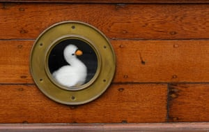 A toy swan on a support vessel