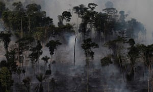 An area of the Amazon rainforest is burnt to clear land for agriculture