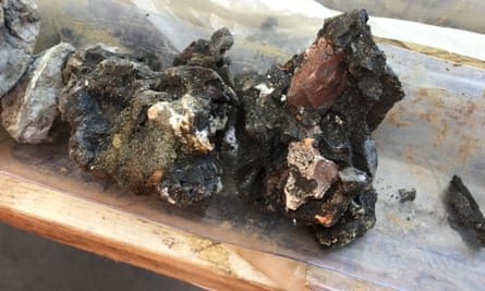 Black clay from the Ruislip bed