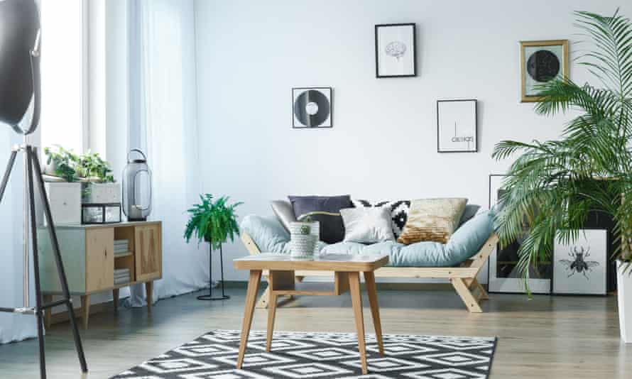 Rug in living room with plants, posters and wooden rustic furniture
