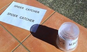 The 'spider catcher'.