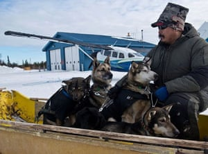 Daryl Petruska waits with a sled-load of dogs dropped from the Iditarod Trail Sled Dog Rac