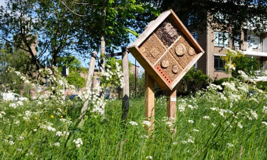 A 'bee hotel' seen in a city.