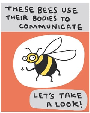 Simone Lia's cartoon strip for the Observer New Review looks at the dance of the bee