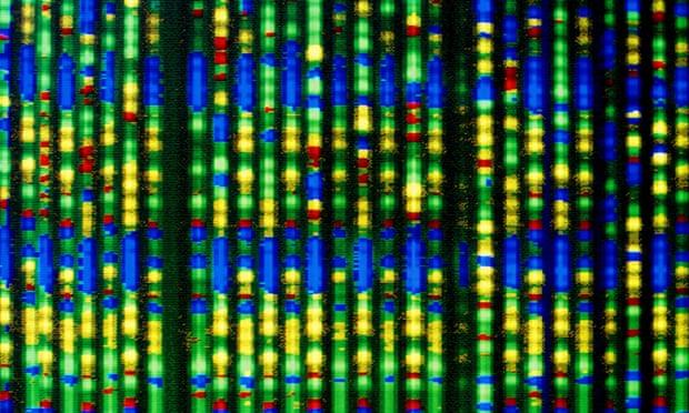 Genomic Risk Score test could predict risk of future heart disease cheaply